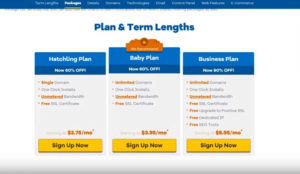 Hostgator Review 2019: Testing Performance, Support & Features